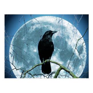 Crow Raven Moon Night Gothic Fantasy Stunning Postcard