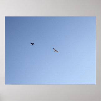 Crow Versus Hawk III Poster