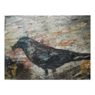 Crow with wild Food Posters