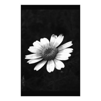Crown Daisy Stationery Paper