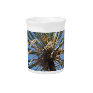 crown of a palm tree pitcher