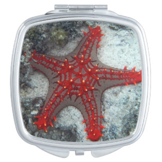 Crown Of Thorns Starfish On The Coral Reef Compact Mirror