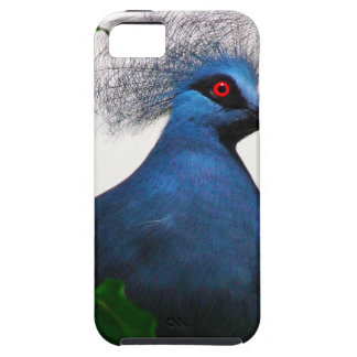 Crowned Pigeon iPhone 5 Covers