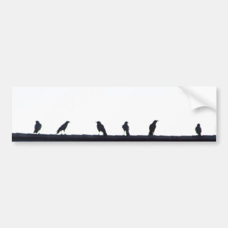 Crows in a line bumper stickers