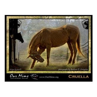 Cruella Post Card