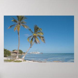 Cruise Ships in Costa Maya Poster