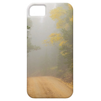 Cruising Into Autumn Fog Barely There iPhone 5 Case
