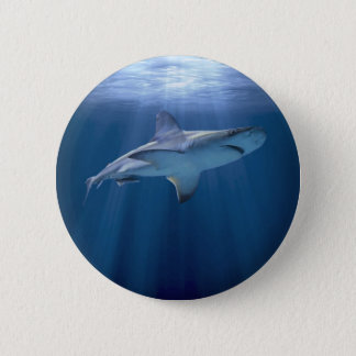 Cruising Shark 6 Cm Round Badge