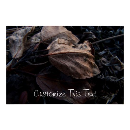 Crunchy Leaf Litter; Customizable Posters