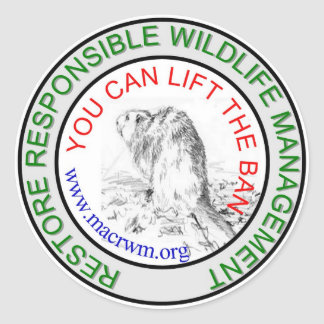CRWM Lift the BAN! Classic Round Sticker