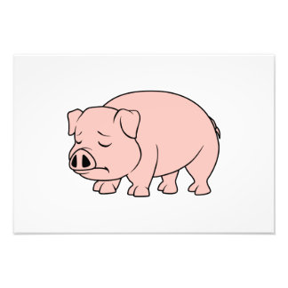 Crying Weeping Pink Piglet National Pig Day Photograph