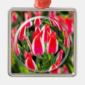 Crystal ball with red-white tulips in field Silver-Colored square decoration