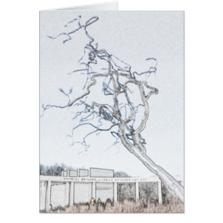 Crystal Bridges Museum of American Art Card