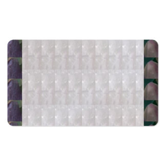 Crystal White - MicroPhotography Tile NavinJoshi Pack Of Standard Business Cards
