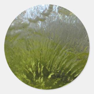 Crystalized Ice Round Sticker