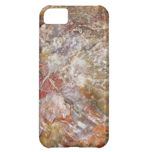 Crystallized Wood iPhone 5C Covers