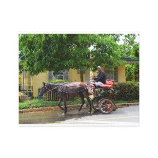 Cuba Horse Drawn Cart Gallery Wrap Canvas