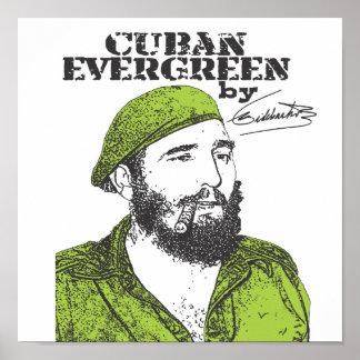 Cuban Evergreen Poster