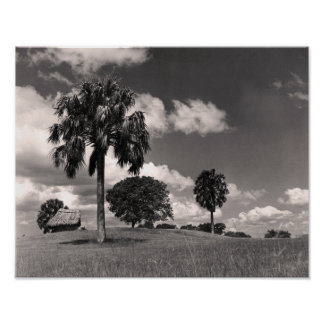 CUBA'S COUNTRYSIDE. POSTER
