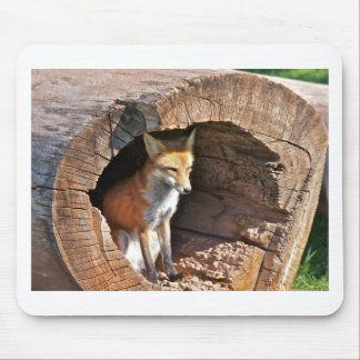 Cubby hole mouse pad