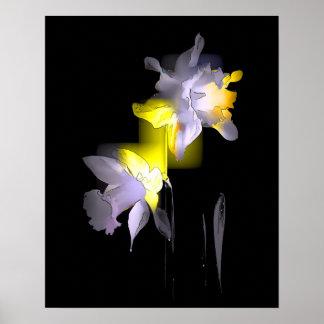 Cubist Daffodils Poster
