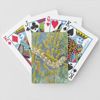 Cucullia Absinthii Caterpillar Bicycle Playing Cards
