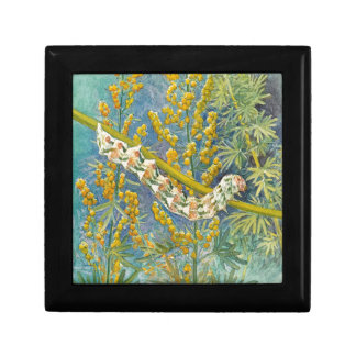 Cucullia Absinthii Caterpillar Gift Box