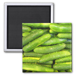 Cucumber Magnet 01