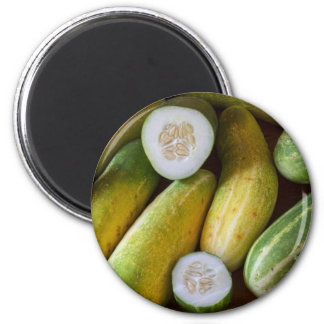 Cucumbers Magnet
