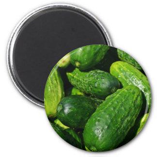 cucumbers pile magnet