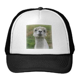 Cuddle Me - Alpaca Cap