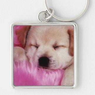 Cuddle Sleepy Puppy Keychain