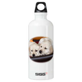 Cuddle Time Labs Water Bottle