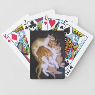 cuddling cats bicycle playing cards