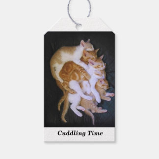 cuddling cats gift tags