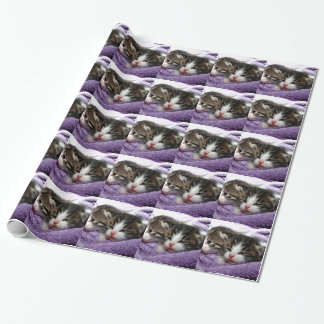 Cuddly Kittens Wrapping Paper