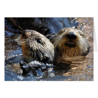 Cuddly Sea Otters Card