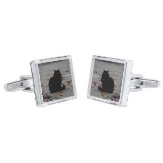 Cufflinks - Fluffy chocolate cat Silver Finish Cuff Links