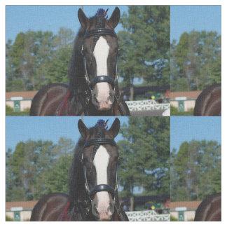 culpeper va draft horse show fabric