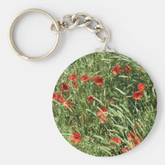 culvert key-ring key ring
