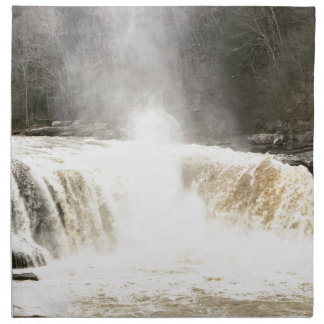 Cumberland Falls Big South Fork Kentucky Napkin