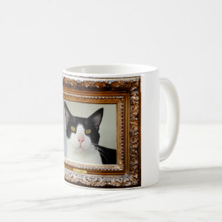 CUP KITTEN AMANCIO