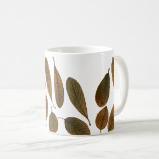 Cup leaves of brown and white winter in