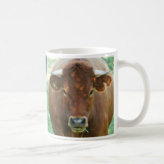 Cup of cows of calves of cattle - photo Jean Louis
