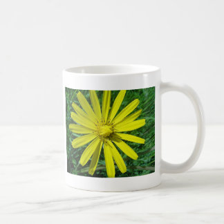 Cup pretty yellow daisy coffee mug