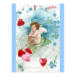 Cupid Snaring Hearts in Web Valentine Postcard