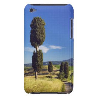(cupressus sempervirens)  - Europe, Italy, iPod Case-Mate Case