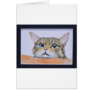 Curiosity Cat Card