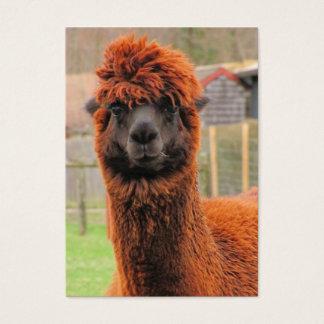Curious Alpaca ~ ATC Business Card
