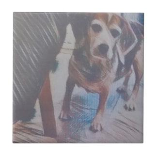 Curious Beagle Ceramic Tile